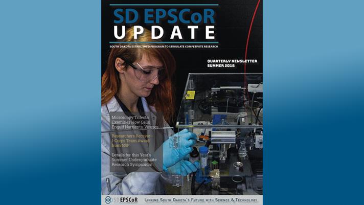 Summernewsletter Frontpage Cover