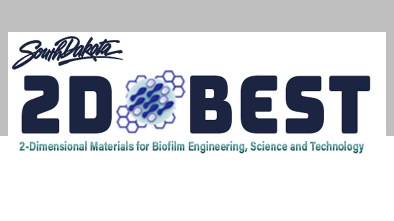 2D Best Logo