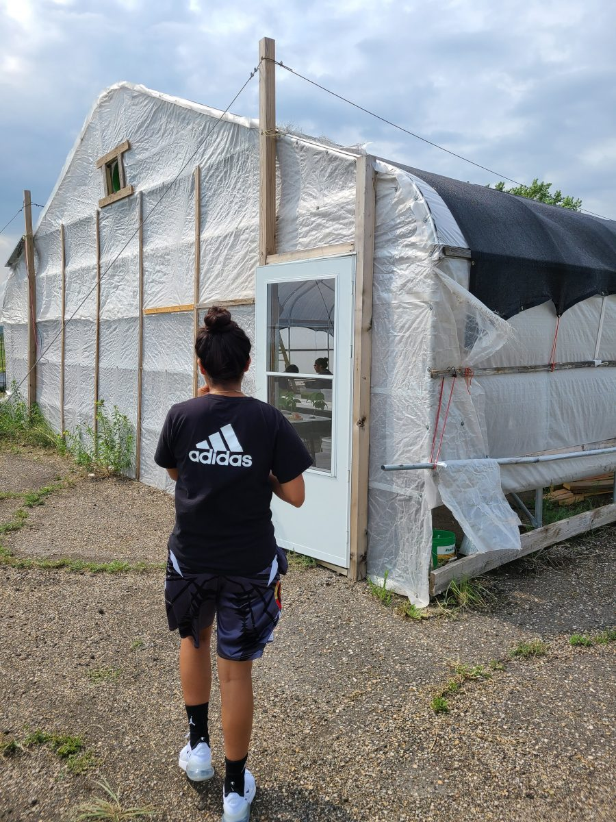 Jones walks up to the greenhouse: a white building with visible wooden supports, a cooling black tarp over top, and a  windowed door.