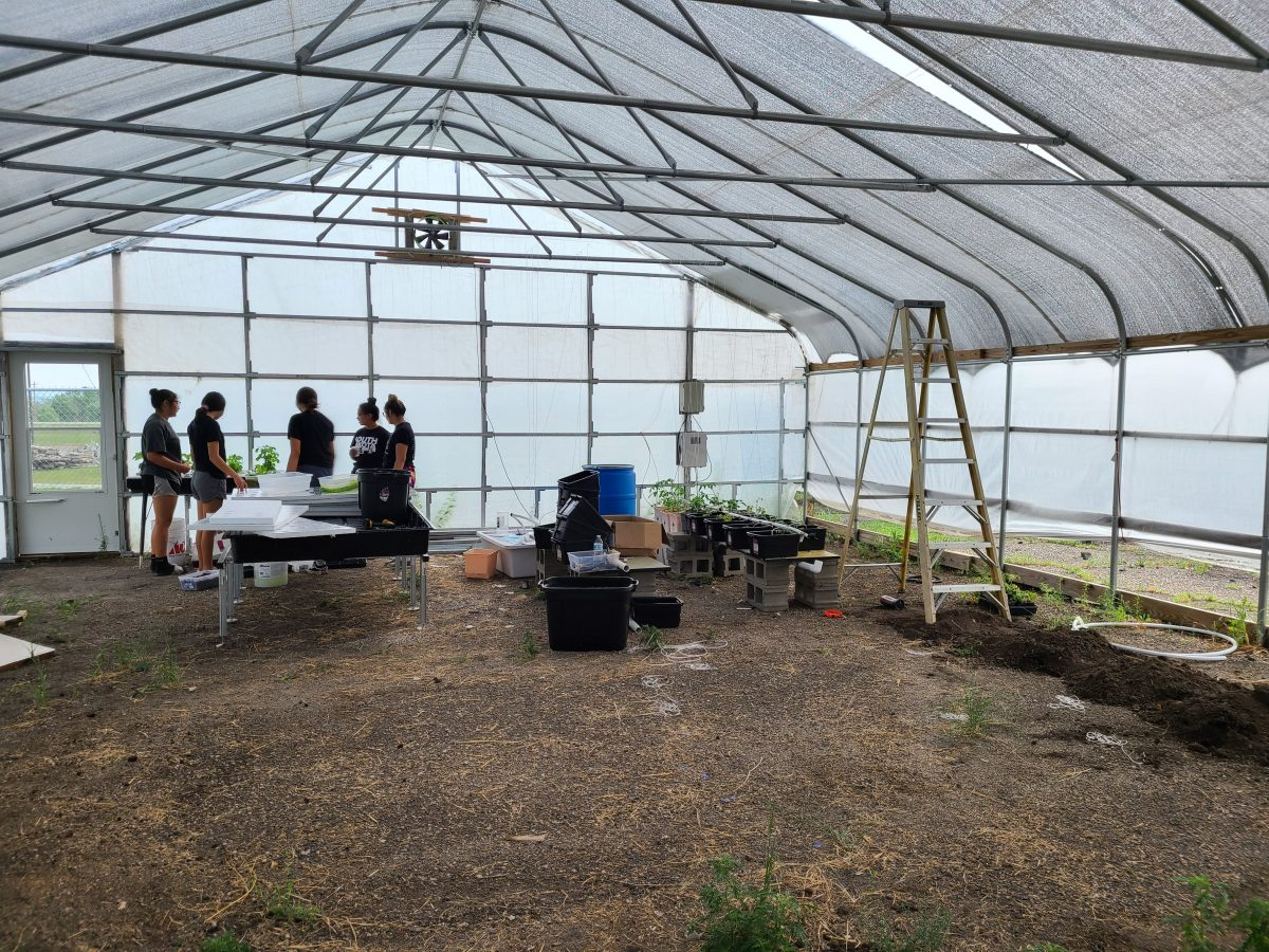 Wide View of the inside of the greenhouse