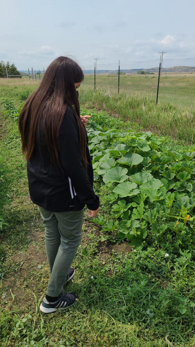 Teijah Estes points out some plants